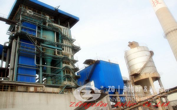 Biomass Combustion in 58 MW Circulating Fluidized-Bed Boiler