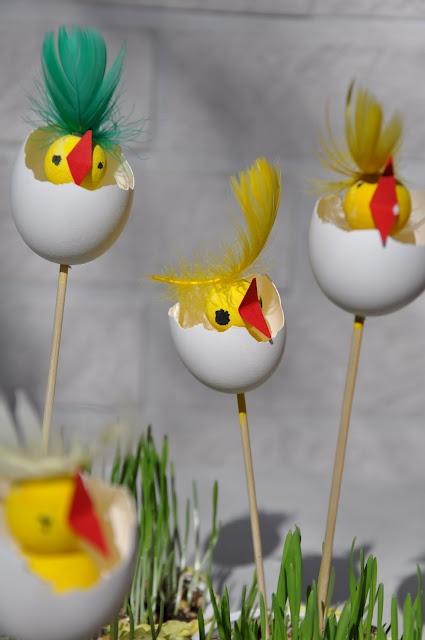 darling chicks