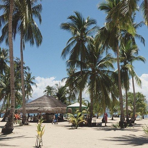 Rest under the shade of coconut trees and nipa huts on Cowrie Island. | 14 Incredible Things To Do In Puerto Princesa, Palawan