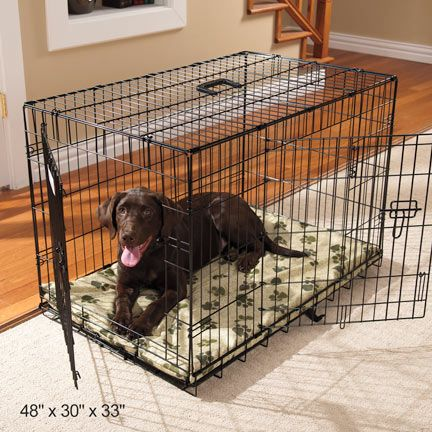 Dog Cages & Crates: Drs. Foster & Smith Basic 2 Door Dog Crate