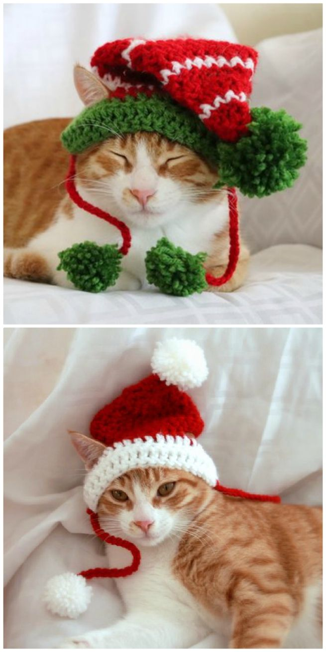 Christmas Hat for Cat Gift for Cat Rainbow Cat Hat cat hat Crochet Pet Hat Hat Cat Cat Lover Gift crochet Cat Hat Christmas Cat Hat