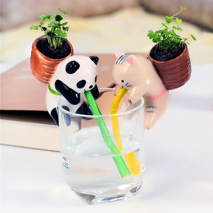 Cute Animal Self Watering Plant Pot  Pot material: pottery 4 styles available:  Rabbit (Mint) Panda (Basil) Pig (Clover) Cat (Wild strawberry)  Includes a ceramic animal planter, plastic straw, seeds, soil and backpack pot,keeps 15-30℃ is fine,2-3 weeks the seeds will sprout. How to use: Put the flowerpot on a mug, and the water will following the straw into the pot.Please Note:The glass is NOT INCLUDED, any glass or mug is ok.