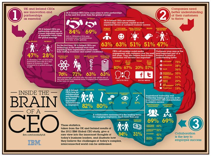 Inside The Brain of a CEO: Ireland, Leadership, Social Media, Inside, Fit Diet, The Brain, Infographic, Socialmedia, Weights Loss