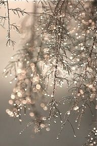 (not mercury glass...but so pretty! )