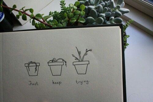 Image de plants, grunge, and tumblr