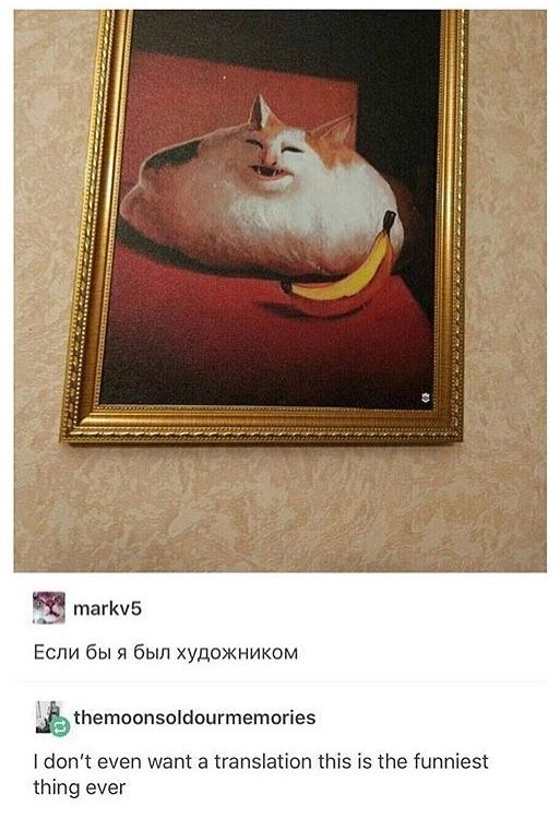 """(Probably incorrect) google translation: """"if I was an artist"""" (honestly, same) Thanks, Russian Cat Side of tumblr!"""