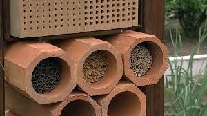 Bildergebnis für mauerbienen insektenhotel