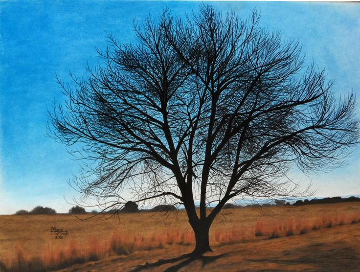 42cm x 59cm in soft pastel  -  for sale