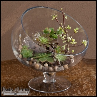 "Large slanted bias terrarium bowl 12"" X 12"" from hoodsandlattice.com for $49.85"