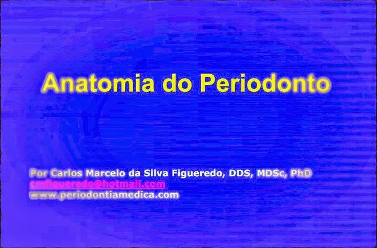 PDF: Anatomia do Periodonto | OVI Dental