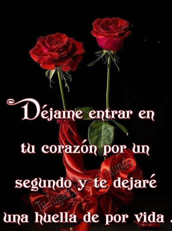 Imagenes de rosas de amor | Musicadelrecuerdo.org
