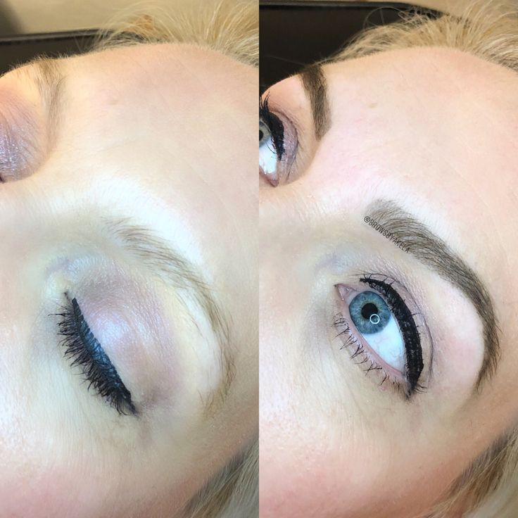Blonde brows wax and tint | Brow wax, Eyebrow makeup tools ...