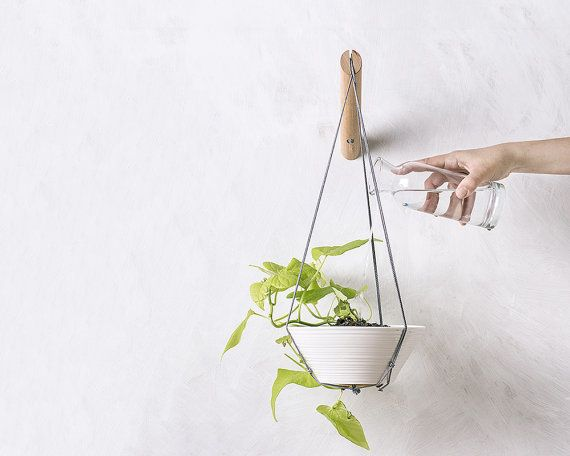 20 Indoor Wall Planters To Take Your Houseplants To New Heights   HuffPost