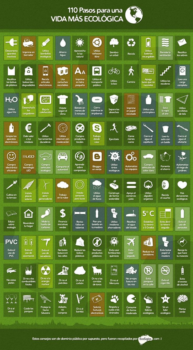 Enfriate el blog que debes seguir...: Infografía Día Mundial del Medio Ambiente 110 pasos para una vida más ecológica