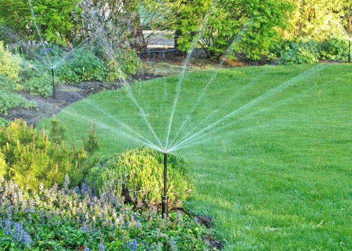 Simple Eine automatische Bew sserung nimmt dem Gartenbesitzer nicht nur eine l stige Aufgabe ab sondern hilft zugleich Garden LandscapingWaterPlants