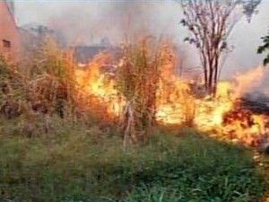 Cazuza: Incêndio atinge área rural em Carmo da Mata, MG, e...