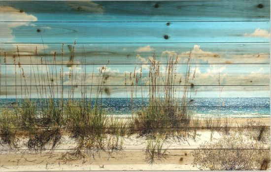 Sand Dunes Beach Photograph Printed on Wood... http://www.beachblissdesigns.com/2016/09/sand-dunes-beach-print-on-wood.html Love it! So rustic and beachy.