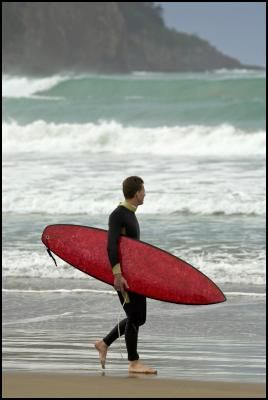 Kiwi Scientists Build Surfboard Using Native New Zealand Flax as Fibreglass Replacement