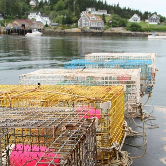 Maine lobster traps ready to set - Lobster season overview