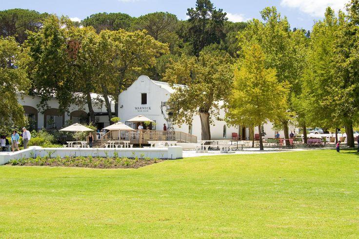 Warwick Wine Estate, Stellenbosch