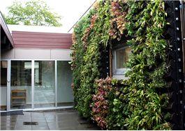 BGreen Living Wall-IT Gröna väggar med inbyggd bevattning från BG Byggros AB. Mer information finns på Byggkatalogen.se