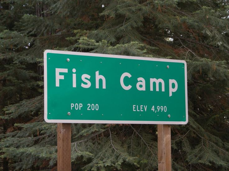 Great rates walking distance to tenaya homeaway fish for Fish camp yosemite