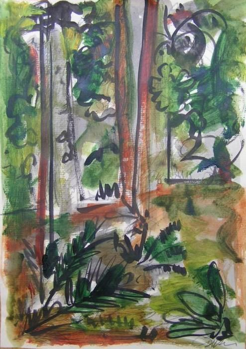 Selva ayer 1