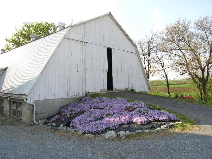 Bartville, PA - Southern Lancaster County - April, 2008