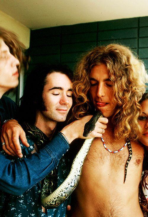 Robert Plant, Vanessa Gilbert, BP Fallon meet the snake and the snake man at the Continental Hyatt House West Hollywood, 1973.