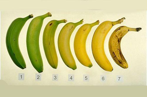¿Sabías que el valor nutricional de los plátanos cambia a medida que éstos maduran? Conoce cuál es la forma más conveniente de comerlos.