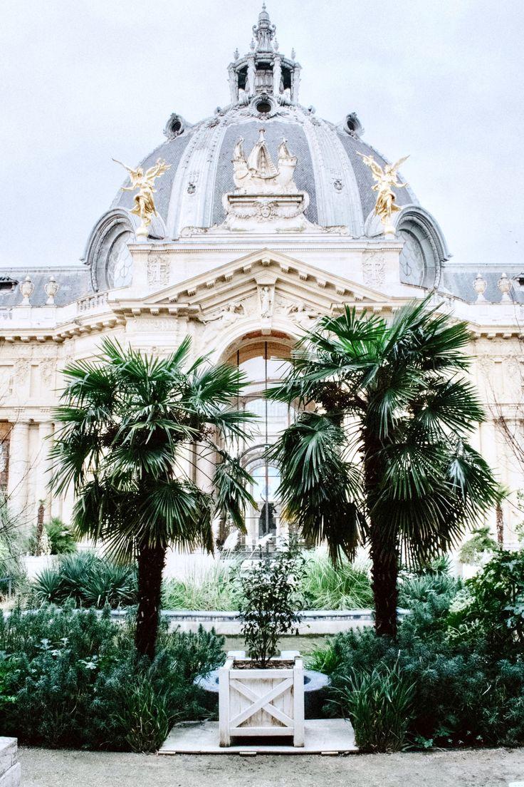 Jardin du Petit Palais... ☀️ #paris