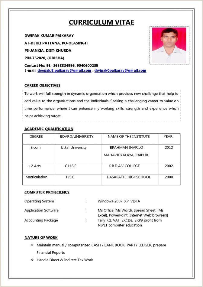 Curriculum Vitae Format Pdf In 2020 Job Resume Format Job Resume Job Resume Template