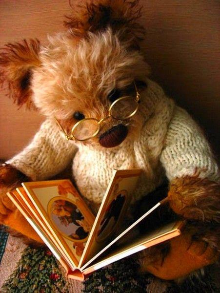 Medvídek čtenář.