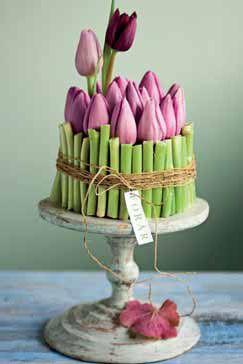 Farvestrålende tulipaner - Dekoration og buketter - Haven - Isabellas