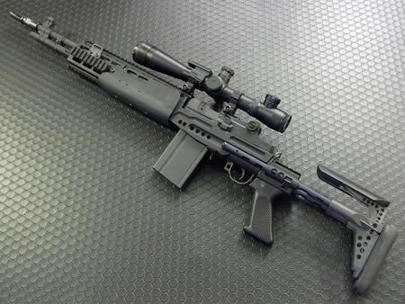 M14 EBR...my grail gun
