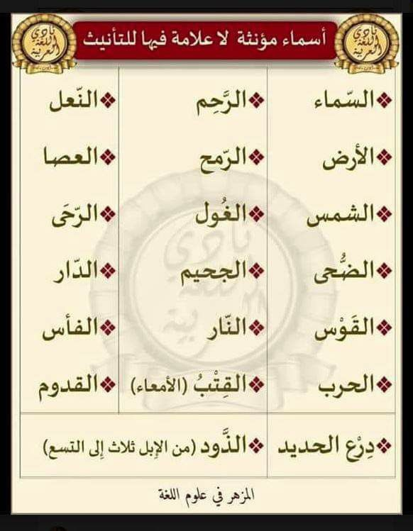 Pin By لوريت الياسمين On Okm Learn Arabic Language Arabic Language Learning Arabic