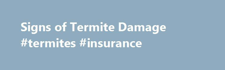 Signs of Termite Damage #termites #insurance http://solomon-islands.remmont.com/signs-of-termite-damage-termites-insurance/  # Signs of Termites Damage Statistically speaking, your property is far more likely to be damaged by termites than by fire. According to the National Pest Management Association (NPMA). termites cost Americans more than $5 billion in damage annually. Just about every property in the U.S is at risk of termites. As a home or business owner, you should be aware of the…