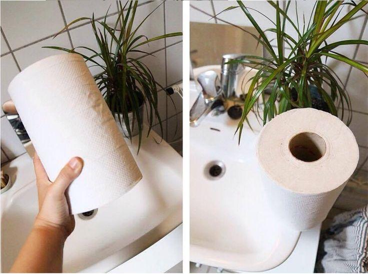 Zero Waste  The Toilet Paper Issue