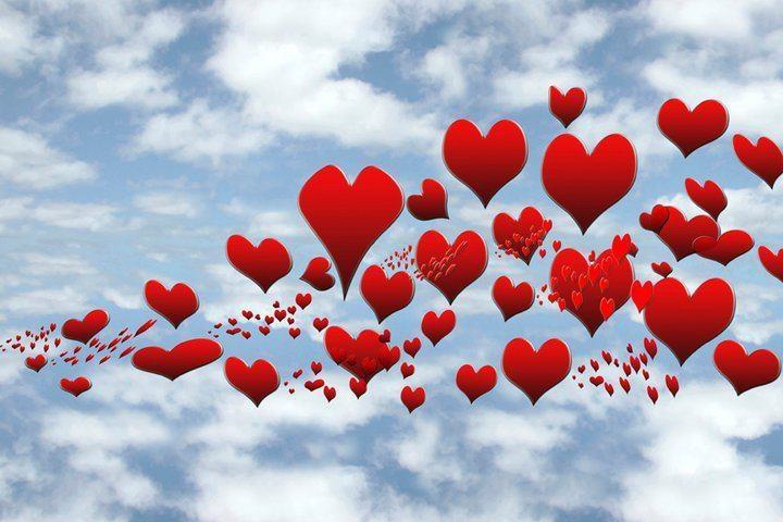 ♥Heavens Heart, Heart Obsession, Ξღღ ღღ, Valentine Dayloveheart,  Rose Hip, Things Heart,  Rosehip, Amor De, Heart Afire