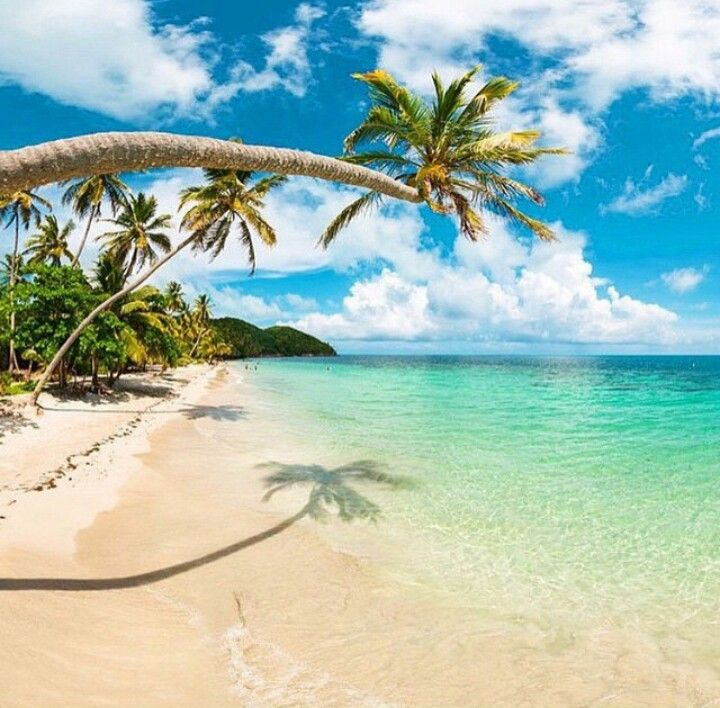 Playa Manzanillo  - Isla Providencia - COLOMBIA