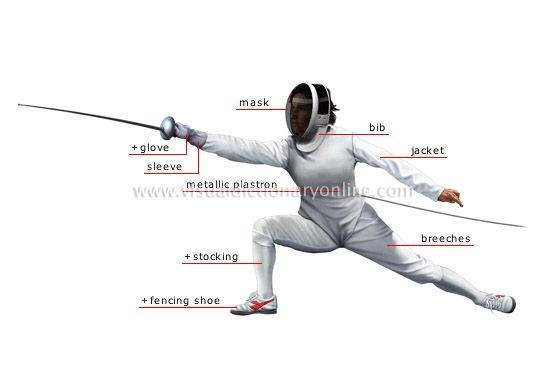 Google Image Result for http://visual.merriam-webster.com/images/sports-games/combat-sports/fencing/fencer.jpg