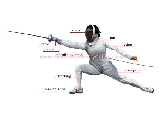 Google Image Result for http://visual.merriam-webster.com/images/sports-games/combat-sports/fencing/fencer.jpg