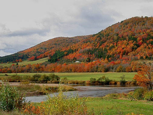 Margaree River Valley, Cape Breton, Nova Scotia. This scene goes on for miles.