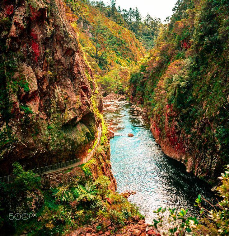 Waihi Gold Mine - Historic Waihi gold mining area Karangahape ranges New Zealand