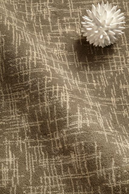 58 Best Images About Shaw Carpets On Pinterest Shaw