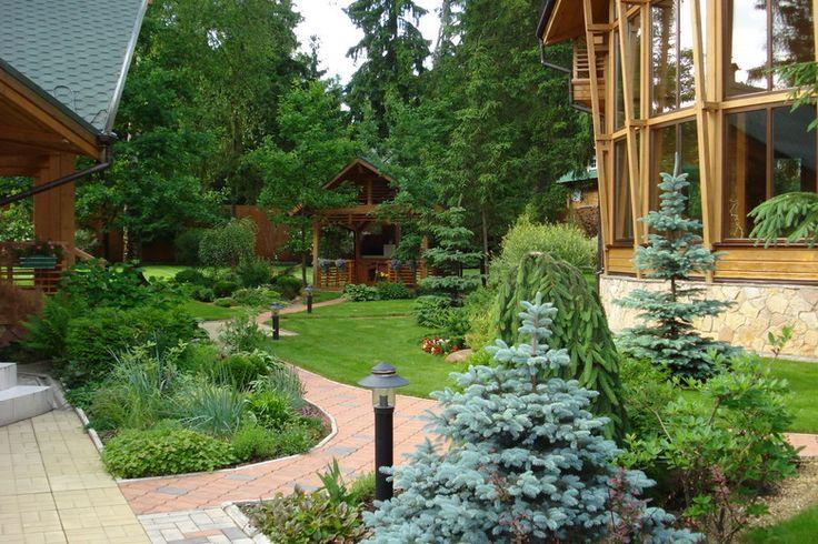 Фото ландшафтного дизайна на участке с деревянным