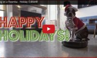Dog on a Roomba – Holiday Edition!! We've seen that classic vid of a cat on a roomba, so why not a dog version? Check out this cute holiday edition of 'Five' the Boston Terrier doing his Santa-dog-on-a-Roomba rendition..