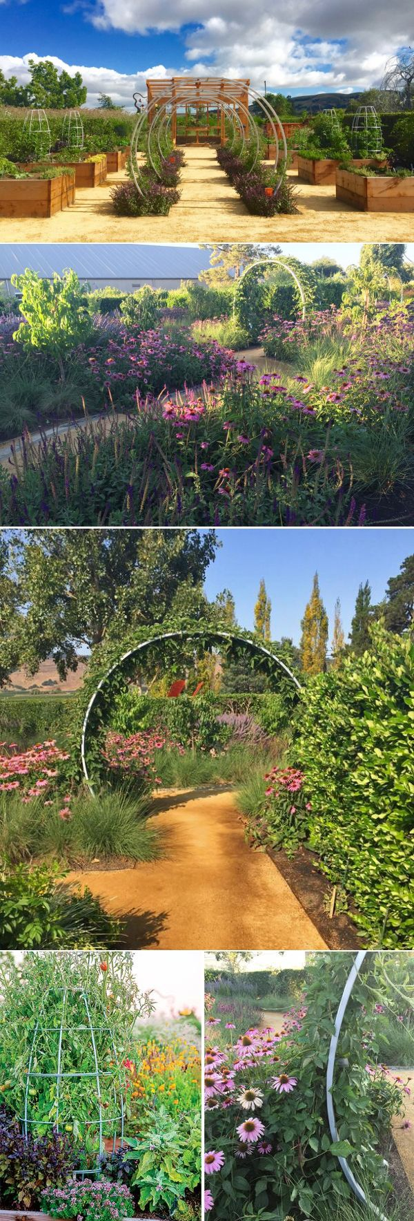 We Are Honored To Be In The Sunset Magazine Sonoma Test Gardens.