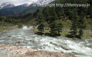 Rejuvenating Pahalgam, Kashmir #AtoZChallenge