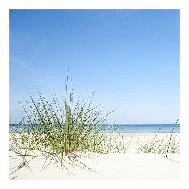 Vliestapete Quadrat »Ostseeküste«